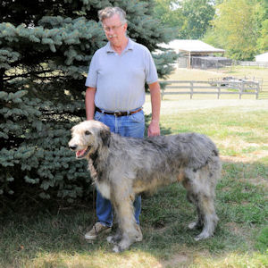 man with Irish Wolfhound (dog)