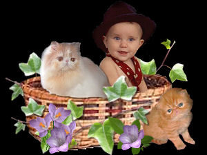 baby in a basket with a kitten