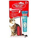 Sentry Dental Kit for Cats