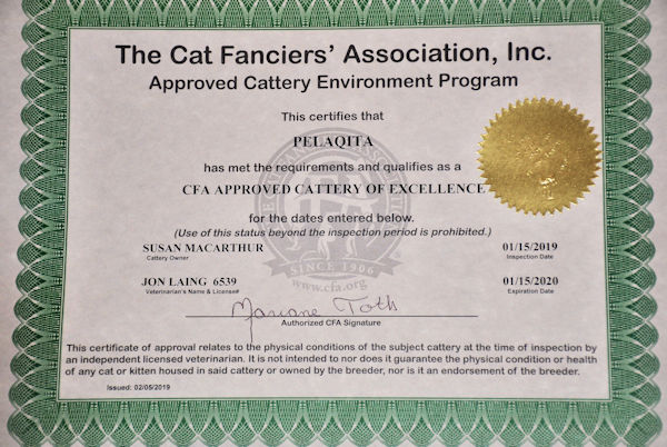CFA Cattery of Excellence - 1/15/2019 - 1/15/2020