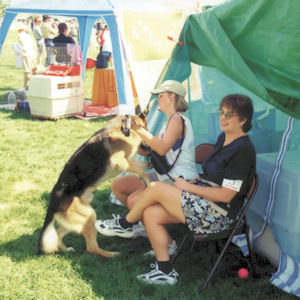 two women with a German Shepherd dog at a dog show
