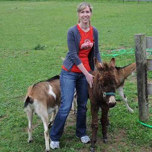 young woman with mini-donkey
