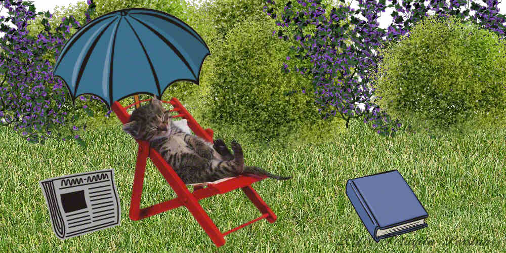 Cat sleeping on beach chair in garden