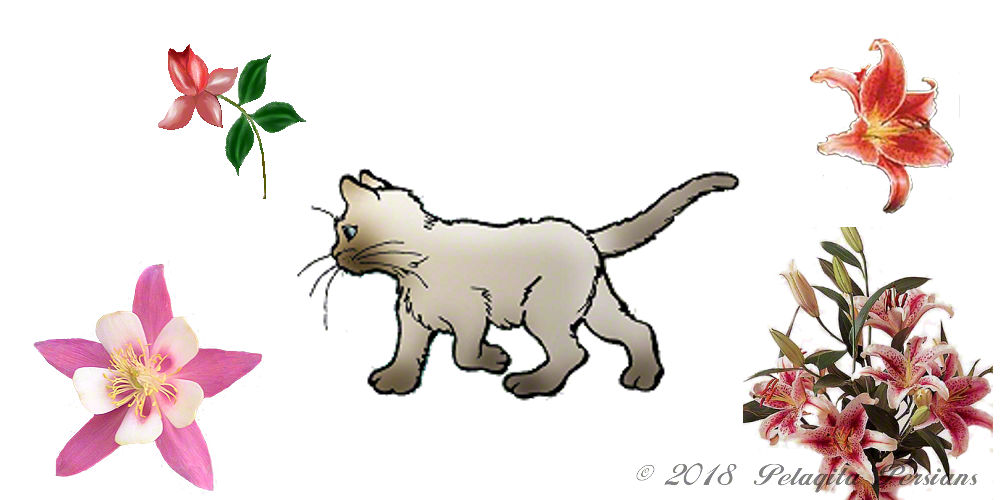 Walking cat with lilies